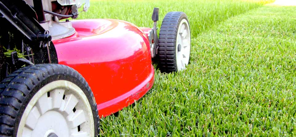 Professional mowing services landscapes lawns gardens for Professional garden maintenance