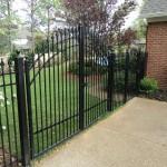 Iron Fence 0002.jpg