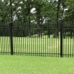 Iron Fence 0005.jpg