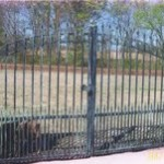 Iron-Wood Fence 0002.jpg